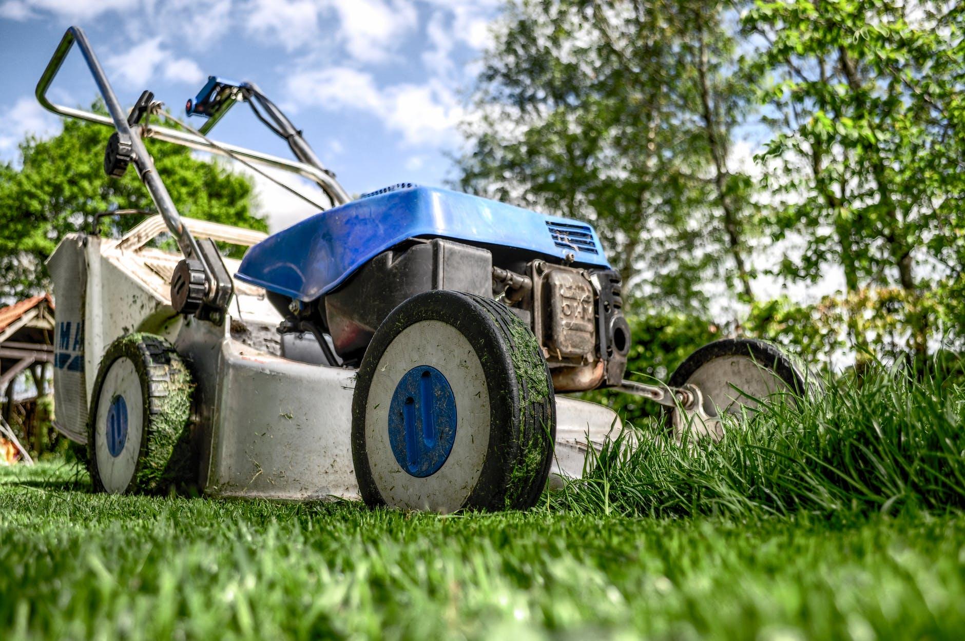 Fælles græsslåning 2021